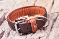 DOGSTYLER® Dog Collar Premium Collar