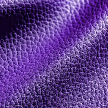 media/image/style-violet.jpg
