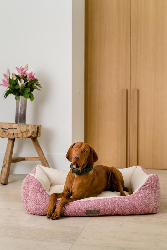 Das NEUE Dog Luxury HARRISON in der spannenden Kombi aus Stoff & Kunstleder