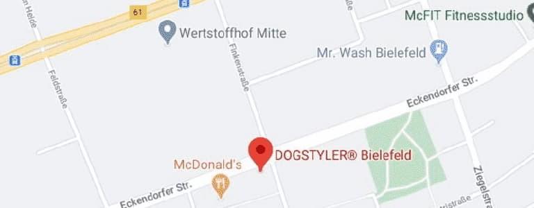 Jetzt direkt zum DOGSTYLER-Bielefeld navigieren