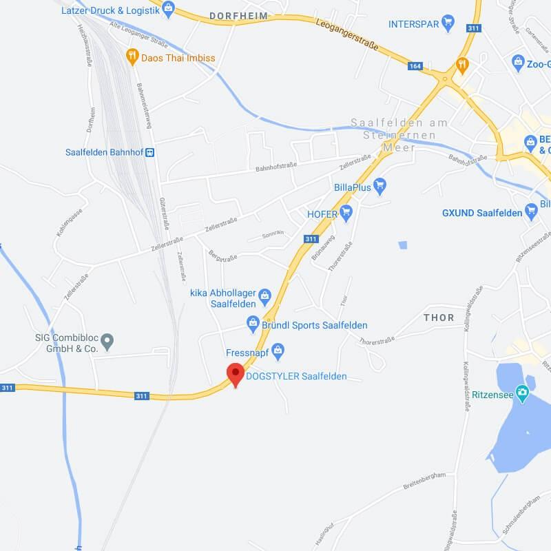 Zur Google Maps Ansicht des DOGSTYLER Saalfelden