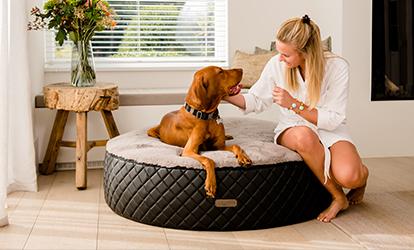 JETZT NEU: Der Dog Cozy Dot EXCELSIOR - Das Hundebett in Donut Form