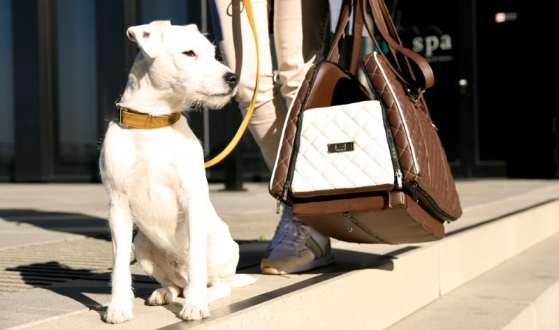 """The stylish & practical dog carrier bag DOGSTYLER® Travel Bagger Coucher Excelsior in the colour """"White Baron""""."""
