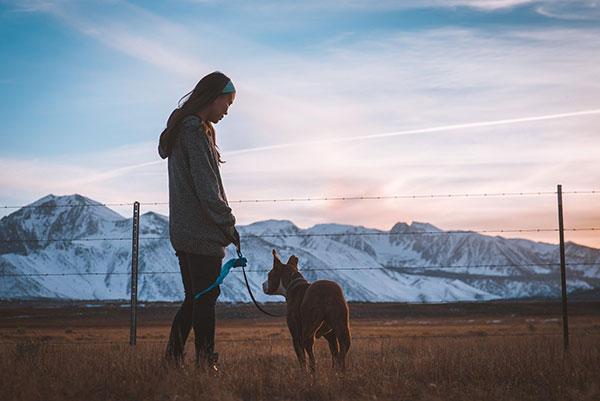 Lange Spaziergänge mit Hund