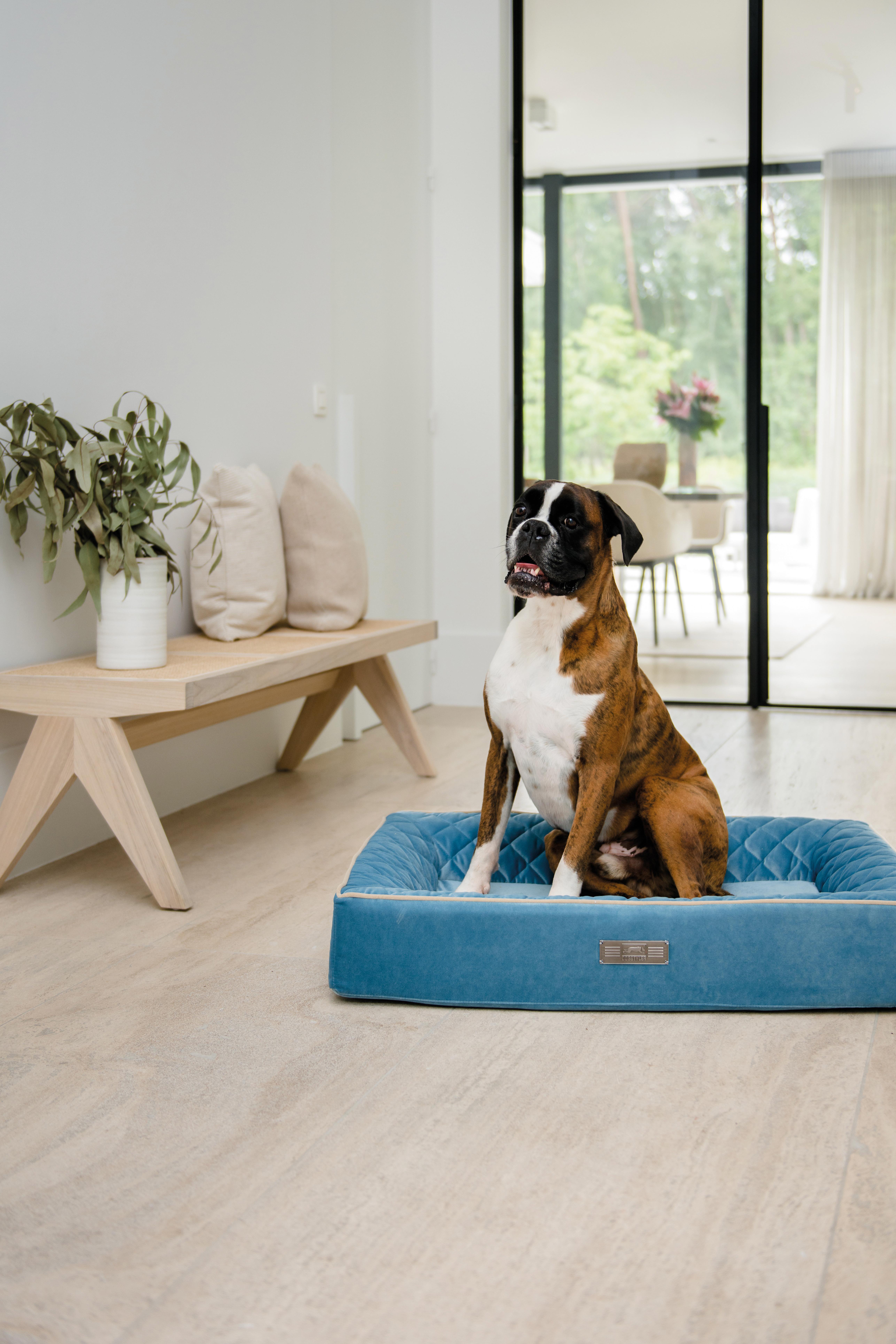 JETZT NEU: Der Dog Lounger VELVET - das samtig weiche Hundebett!