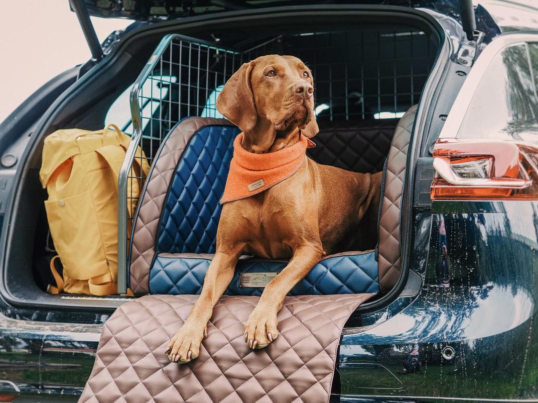Wunschfarbe gefällig? Viele Sitze wie den EXCELSIOR für den Kofferraum gibt es auch in Wunschfarben.