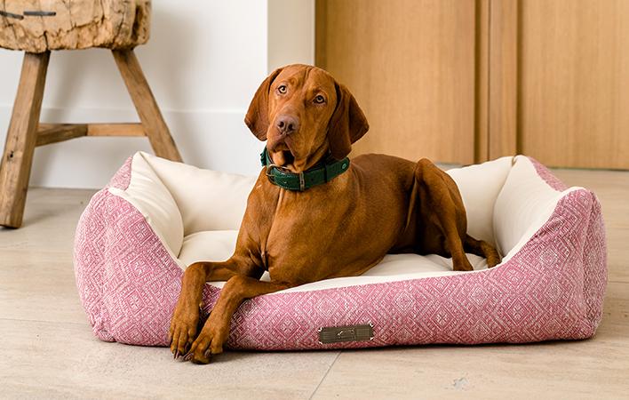 Nicht nur stylisch, sondern auch hygienisch und bequem - DOGSTYLER Hundebetten