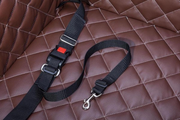 DOGSTYLER® Click & Safety REGULAR dog safety harness system