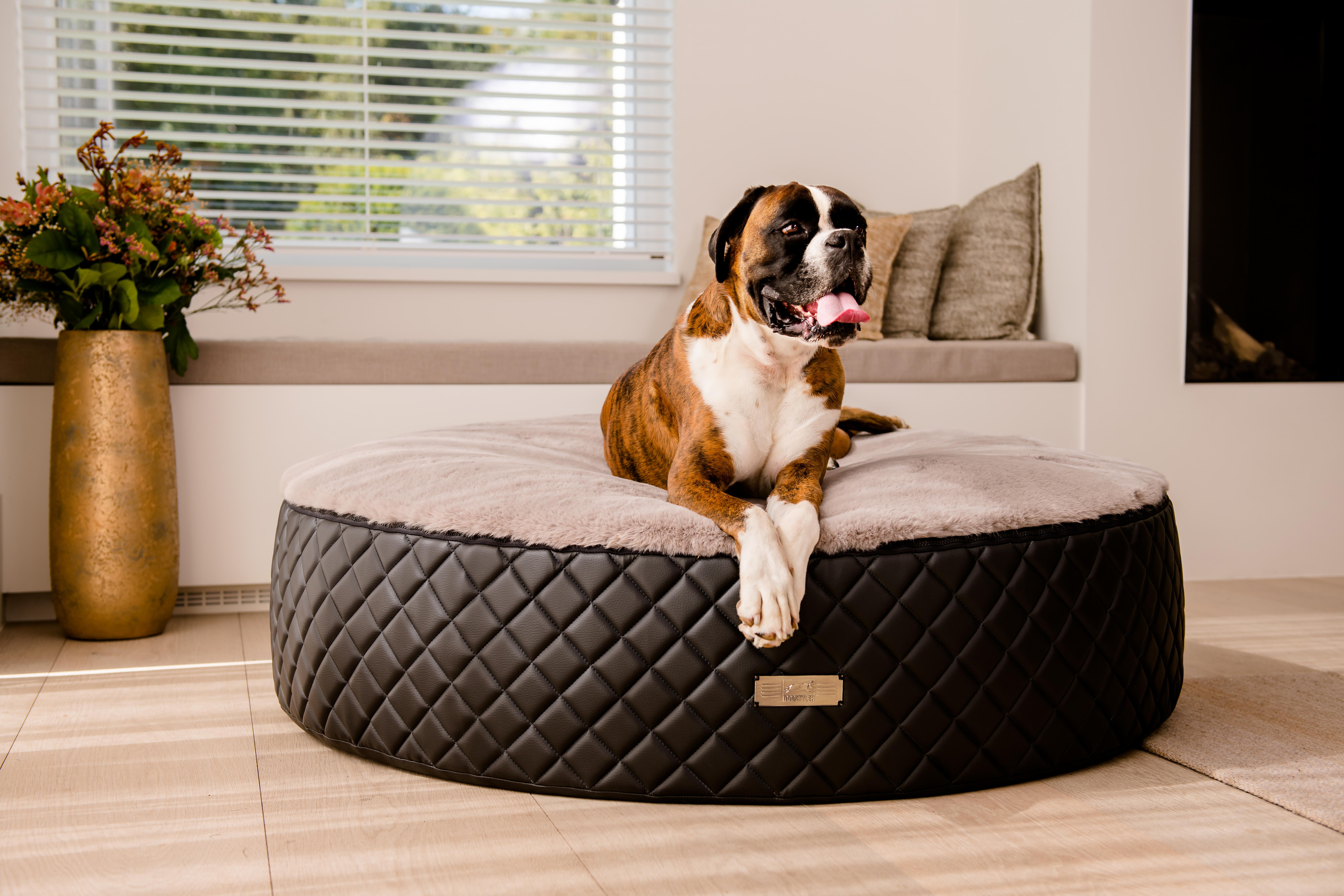 Der neue Dog Cozy Dot EXCELSIOR - der Donut als Hundebett von DOGSTYLER