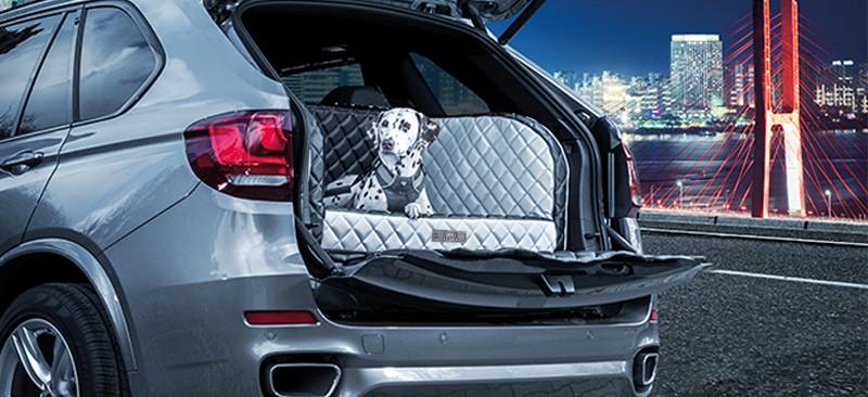 Alles über DOGSTYLER - einem deutschen Hersteller für Premium Hunde-Produkte