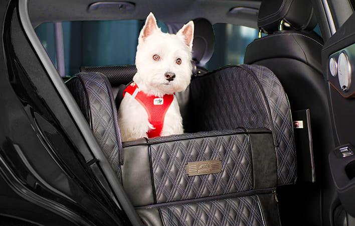 DOGSTYLER für den Autositz