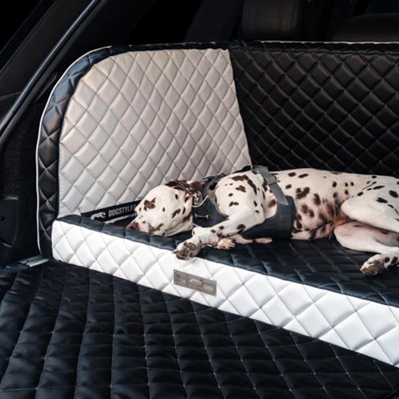 Mit dem Hund auf reisen sicher unterwegs