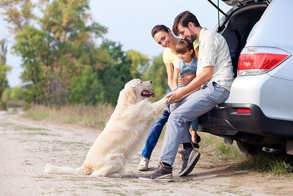 unterwegs-mit-kind-und-hund